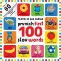 Podívej se pod okénko - prvních 100 slov - first 100 words - kol.,