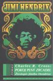 Pokoj plný zrcadel - Charles R. Cross