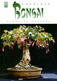 Pokojová bonsai - Jindřich Votýpka
