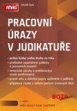 Pracovní úrazy v judikatuře - Zdeněk Šenk