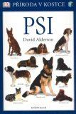 Psi - David Alderton