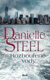 Rozbouřené vody - Danielle Steel