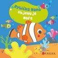 Rybička Nono objevuje moře - kolektiv