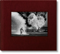 Sebasti?o Salgado. Kuwait. A Desert on Fire (Collector's Edition) - Sebastiao Salgado, ...