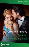 Setkání v Sethbury Hall - Chantelle Shawová