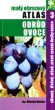 Slivoně, třešně, višně, méně známe druhy ovoce - Miloslav Richter