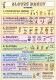 Slovní druhy Podstatná jména - Petr Kupka