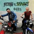 44/876 - Sting, Shaggy