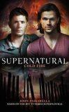 Supernatural - Cold Fire (Supernatural 13) - John Passarella
