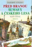 Před branou Šumavy a Českého lesa - Aleš Česal