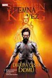 Temná věž 2 - Dlouhá cesta domů - Stephen King,  Jae Lee, ...
