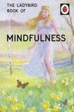 The Ladybird Book Of Mindfulness - Jason Hazeley