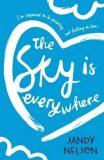 The Sky Is Everywhere - Jandy Nelsonová
