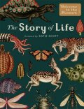 The Story of Life: Evolution (Extended Edition) (Welcome To The Museum) - Katie Scott