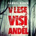 V lese visí anděl - Samuel Bjork