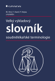 Velký výkladový slovník soudnělékařské terminologie - Miroslav Hirt,  kolektiv a, ...