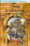 Versailleské romány 8 Trůn v ohrožení - Hermann Schreiber
