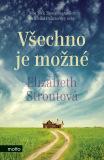 Všechno je možné - Elizabeth Stroutová