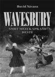 Wavesbury: Smrt mezi kapkami deště - David Návara