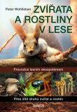 Zvířata a rostliny v lese - Peter Wohlleben