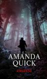 Zmizení - Amanda Quick