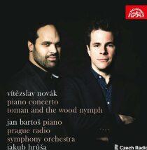 Klavírní koncert, Toman a lesní panna