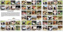 Hospodářská zvířata - pexeso