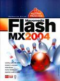 Flash MX 2004
