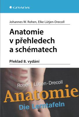 Anatomie v přehledech a schématech - Johannes W. Rohen, Elke Lütjen-Drecoll - e-kniha