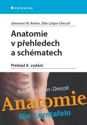 Anatomie v přehledech a schématech - Johannes W. Rohen, Elke Lütjen-Drecoll