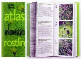 Atlas krkonošských rostlin - Jiří Dvořák, Jan Štursa