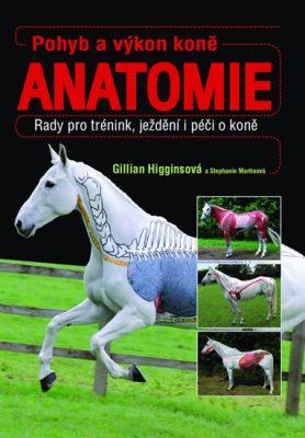 Pohyb a výkon koně Anatomie