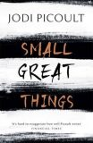 Small Great Things - Jodi Picoultová